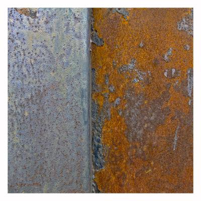 Rusty Panel I