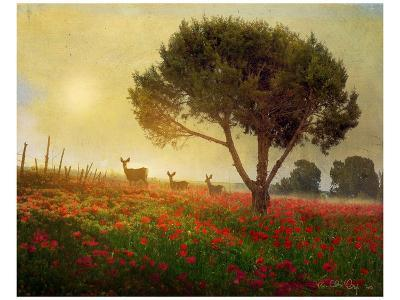 Trees, Poppies and Deer I