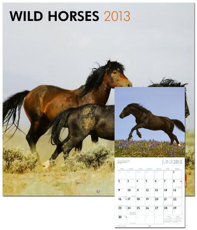 Wild Horses - 2013 Wall Calendar