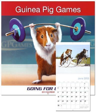 Guinea Pig Games - 2013 Wall Calendar
