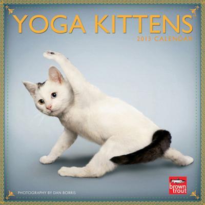 Yoga Kittens - 2013 Mini Calendar