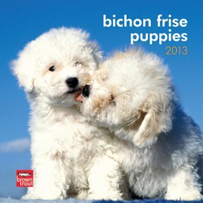 Bichon Frise Puppies - 2013 Mini Calendar
