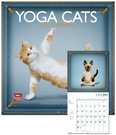 Yoga Cats - 2013 Wall Calendar
