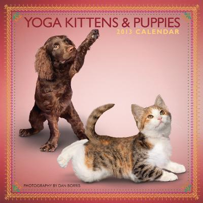 Yoga Kittens and Puppies - 2013 Mini Wall Calendar