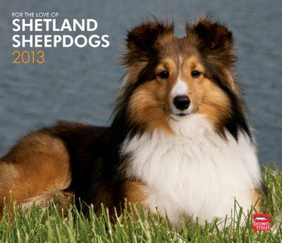 For The Love Of Shetland Sheepdogs - 2013 Deluxe Wall Calendar