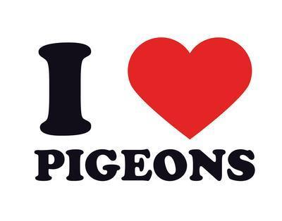 I Heart Pigeons