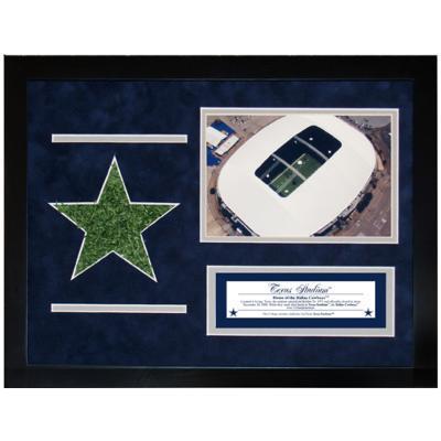 Texas Stadium Aerial Shot Turf Collage