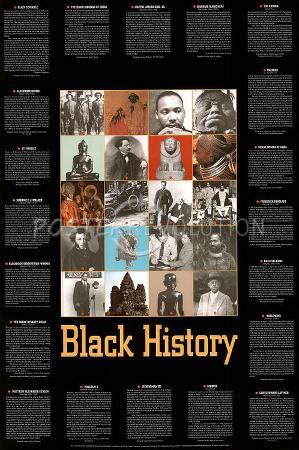 Black History (Bio and Pics) Art Poster Print