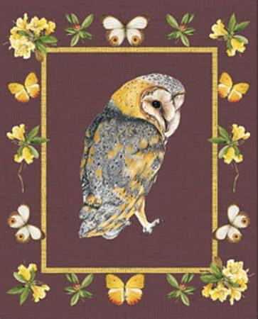 Nice Animals Owl