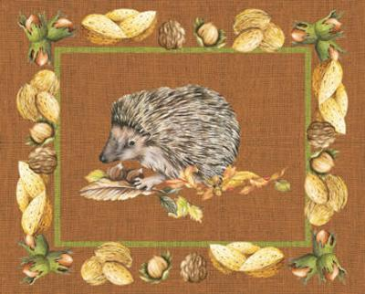 Nice Animals Hedgehog