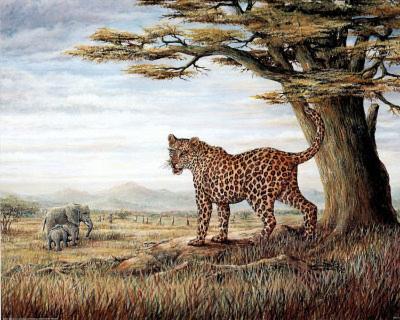 Leopard & Elephants (Savanna)