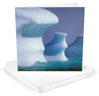 Iceburg Greeting Cards 12 Per Package