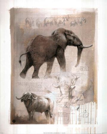 Elephant (And Water Buffalo)
