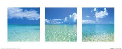 Tropical Infinity Triptych