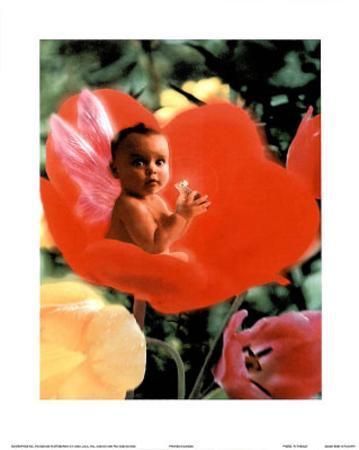 Baby In Flower I