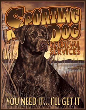Sporting Dog Retrieval Services