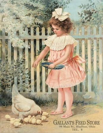 Gallant's Feed Store Girl Feeding Chickens
