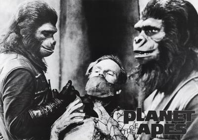 Planet Of The Apes Movie (Group, B&W) Poster Print