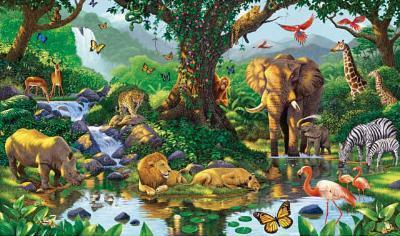 Nature's Harmony Jungle Animals