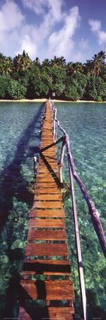 Onne van der Wal Bridge to Paradise Art Print Poster