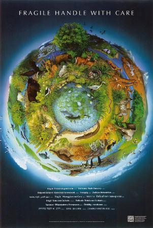 Fragile Earth Conservation Educational Chart Poster