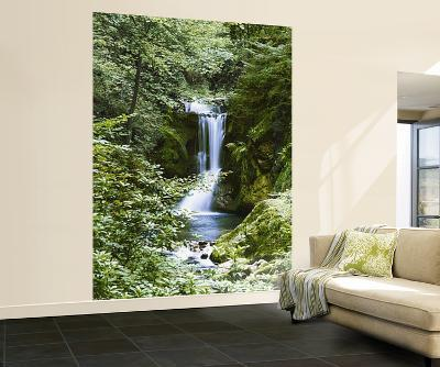 Waterfall in Spring Wall Mural