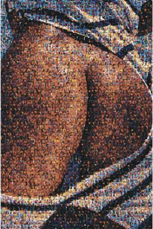Pin-Up Photomosaic, Ass of Asses, Art Poster Print