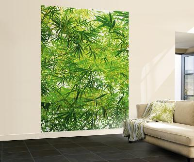 Bamboo Leaves Wall Mural
