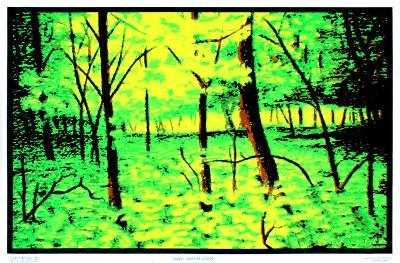 Summer Woods Flocked Blacklight Poster Art Print