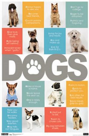 Dogs ABCs Art Print Poster