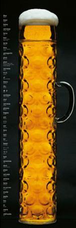 Oktoberfest Beer Stein Door Poster Print