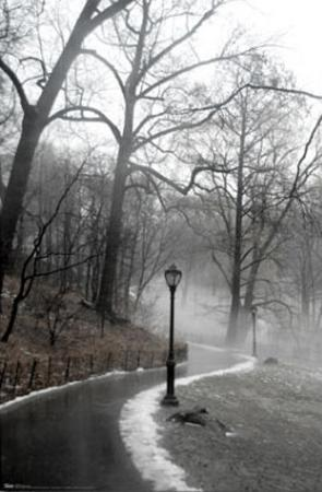 New York City (Winter in Central Park) Art Poster Print