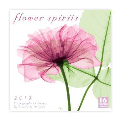 Flower Spirits  - 2013 16-Month Calendar