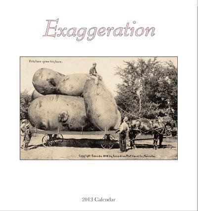 Exaggeration - 2013 Easel/Desk Calendar
