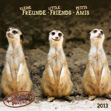 Little Friends - 2013 Wall Calendar