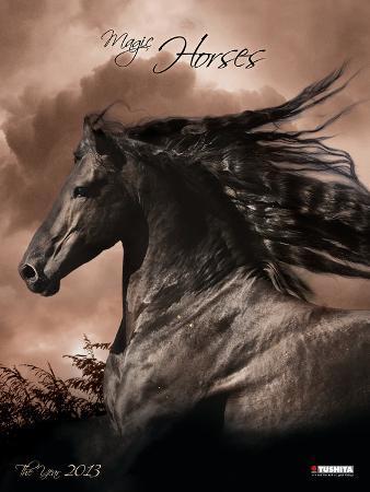 Magic Horses - 2013 Poster Décor Calendar
