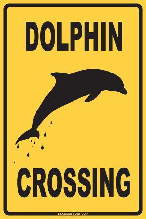 Dolphin Crossing