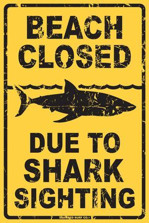 Beach Closed Due To Shark Sighting Tin Sign At Allposters Com