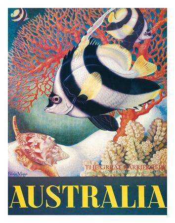 Australia, Great Barrier Reef c.1956