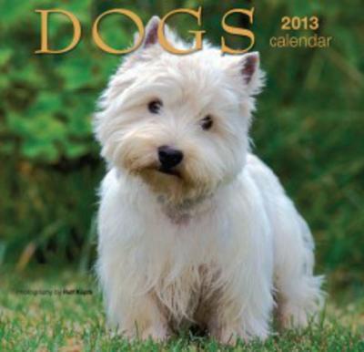 Dogs - 2013 Mini Calendar