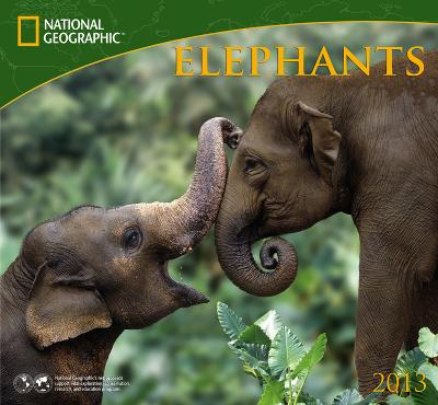National Geographic: Elephants - 2013 Calendar