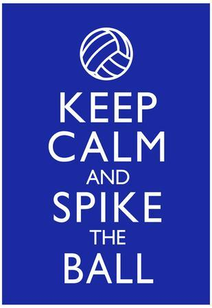 Keep Calm and Spike the Ball Volleyball