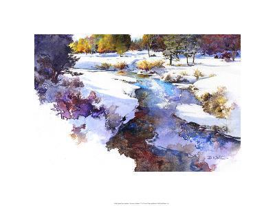 Snake River Meadow - Keystone, Co.