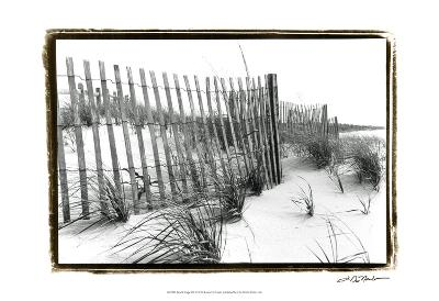 Beach Scape III