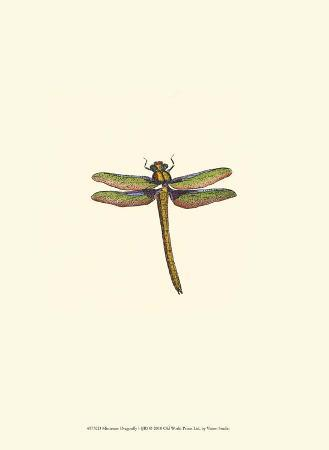 Miniature Dragonfly I