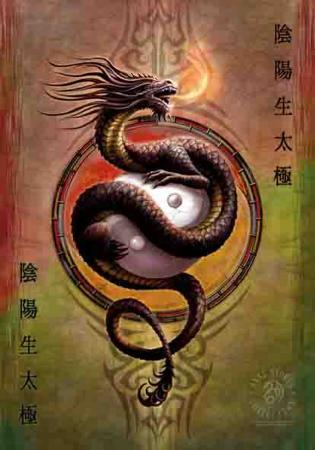 Anne Stokes - Yin Yang Protector