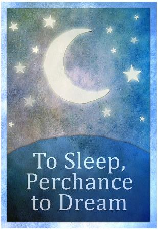 To Sleep Perchance To Dream Art Poster Print