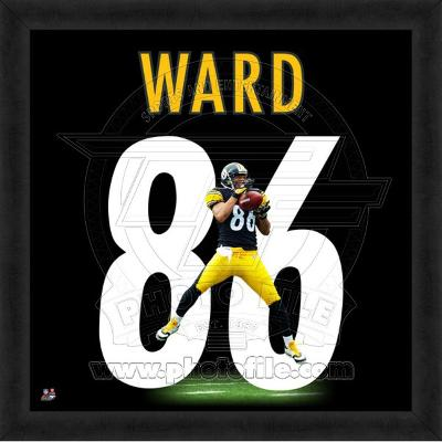 Hines Ward, Steelers representation of the player's jersey
