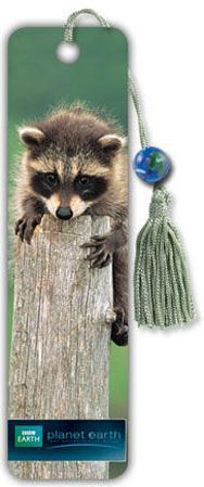 Planet Earth - Baby Raccoon Collector's Beaded Bookmark