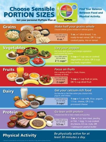myplate portion size poster prints at allposterscom